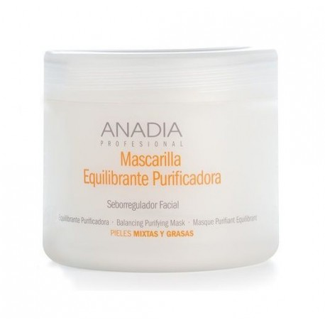 MASCARILLA PURIFICADORA FACIAL 500ml
